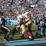 2013 49ers at Panthers NFC Divisional