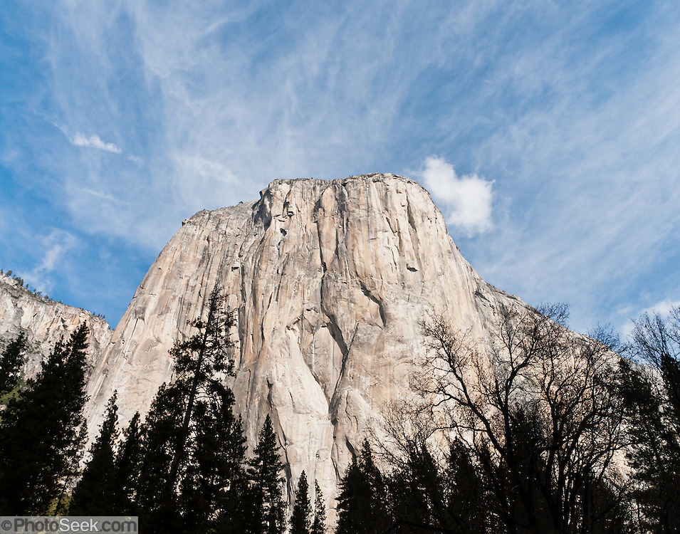 The granite monolith of El Capitan rises 3000 feet (900 m) above Yosemite Valley floor to 7569 feet elevation in Yosemite National Park, California, USA. Rock climbers flock from around the world test themselves on the huge granitic face. Designated a World Heritage Site by UNESCO in 1984, Yosemite is internationally recognized for its spectacular granite cliffs, waterfalls, clear streams, Giant Sequoia groves, and biological diversity. 100 million years ago, El Capitan and the entire Sierra Nevada crystallized into granite from magma 5 miles underground. The range started uplifting 4 million years ago, and glaciers eroded the landscape seen today in Yosemite. Panorama stitched from 2 overlapping photos.