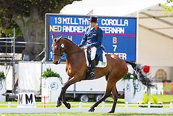 Hefferman Andrew, (NED), Boleybawn Ace<br /> First Horse Inspection<br /> Mitsubishi Motors Badminton Horse Trials - Badminton 2015<br /> © Hippo Foto - Libby Law<br /> 07/05/15