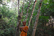 A novice monk in the Monks Community Forest.
