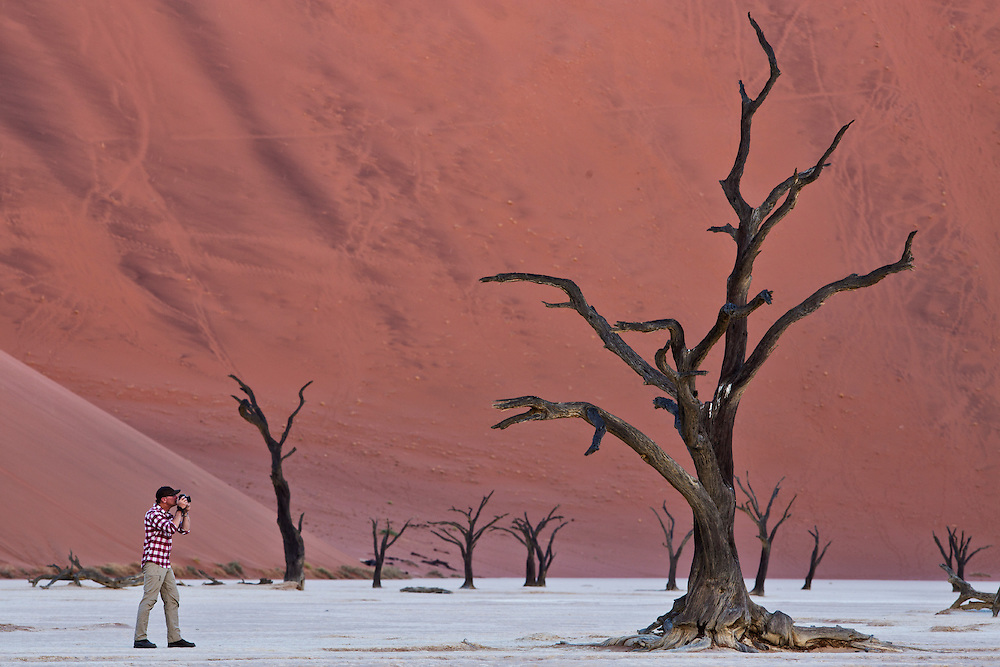 A man photographs the trees in the salt pan after sunset at Dead Vlei.