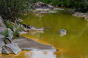 Heavy metals discolor the water near Baker's Bridge north of Durango, Colorado following the Gold King Mine spill in Silverton, Colorado, August 5, which released an estimated one million gallons of toxic wastewater into the Animas River.