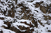 LADAKH, INDIA: Male snow leopard sits on snow covered rocks in Hemis National Park.