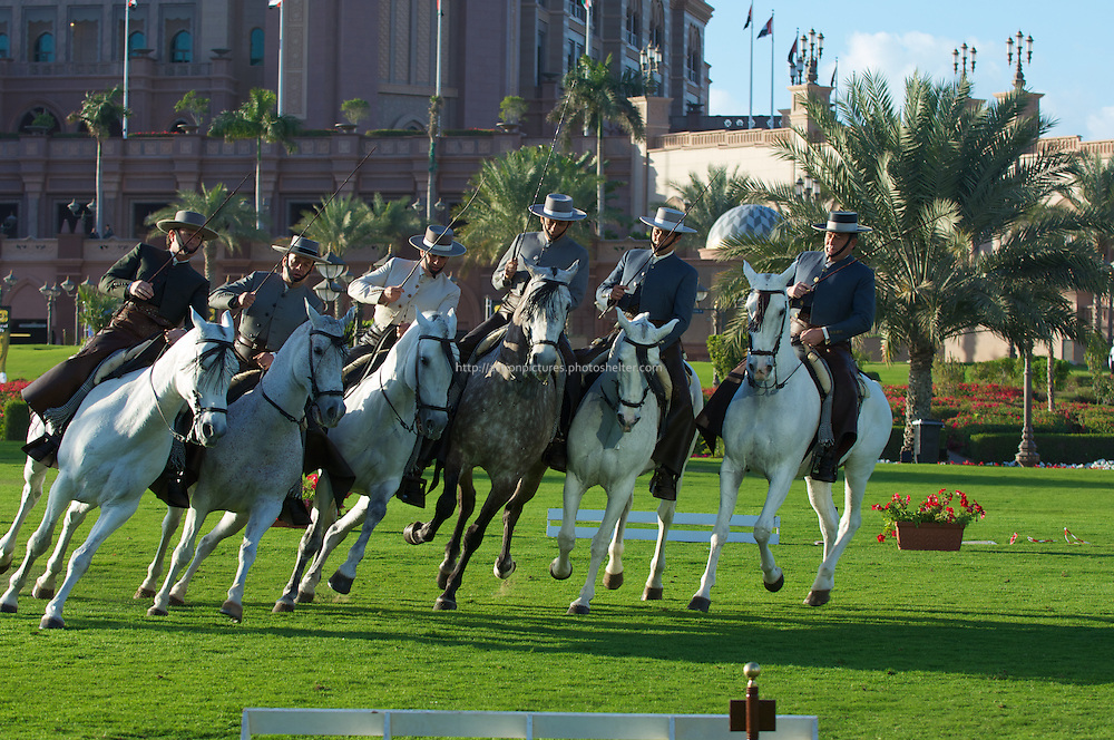 andalusian horses demonstration at  emirates palace, abu dhabi, uae, 14 february 2011, spain, arab emirates,