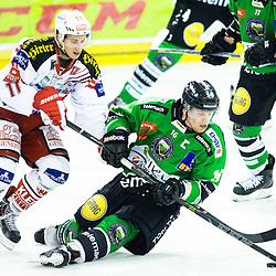 20141128: SLO, Ice Hockey - EBEL League 2014/15, HDD Telemach Olimpija vs EC KAC