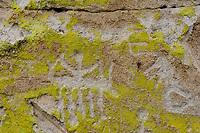 Dry Creek rock art, carved through green lichen; San  Luis Valley, Rio Grande County, CO