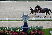 Longines Klok<br /> Excellent Dressage Sales<br /> Longines FEI/WBFSH World Breeding Dressage Championships for Young Horses 2016<br /> © DigiShots