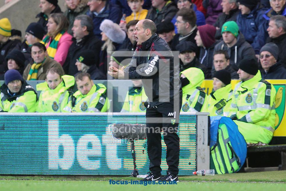 Norwich Manager Alex Neil during the Barclays Premier League match at Carrow Road, Norwich<br /> Picture by Paul Chesterton/Focus Images Ltd +44 7904 640267<br /> 12/12/2015