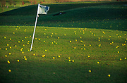 A3AANE Golf course driving range with yellow balls over the fairway and greens