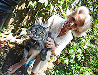 Senior woman stroking cat while sitting in garden