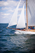 Peggy Bawn racing at the Museum of Yachting Classic Yacht Regatta