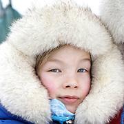 Sami Reindeer Finnmark