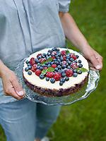 Motiv: Blåbärsbak 2012<br /> Recept: Katarina Carlgren<br /> Fotograf: Thomas Carlgren<br /> Användningsrätt: Publ en gång <br /> Annan publicering kontakta fotografen