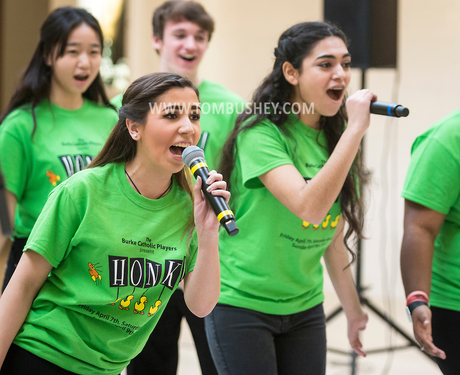 """Town of Wallkill, New York - John S. Burke Catholic High School students perform a sample of the musical """"Honk"""" in the 2017 All-County Musical Showcase and Visual Arts Display at the Galleria at Crystal Run on Feb. 25, 2017."""