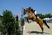 Paris, France : Scott Brash riding Hello Jefferson during the Longines Paris Eiffel Jumping 2018, on July 5th to 7th, 2018 at the Champ de Mars in Paris, France - Photo Christophe Bricot / ProSportsImages / DPPI