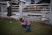 A cowboy spends a few moments of reflection before preparing to compete in the Bareback Bronco at the 98th Falkland Stampede in Falkland, B.C. (2016)