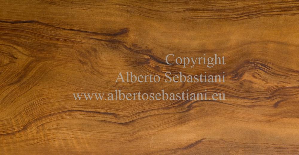 a walnut tree wood texture