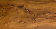 a walnut tree wood texture