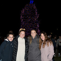 Tree Lighting 2017, Christmas, Holidays, Photo by Emma Thompson