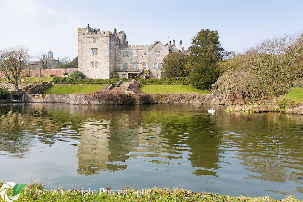 March at Sizergh Castle, Cumbria and a swan glides peacefully on the garden's lake