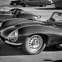 D-Type Jaguar.