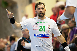 Attila Vadkerti #24 of Hungary during handball match between National teams of Slovenia and Hungary in play off of 2015 Men's World Championship Qualifications on June 15, 2014 in Rdeca dvorana, Velenje, Slovenia. Photo by Urban Urbanc / Sportida