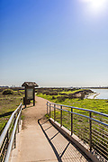 Bolsa Chica Wetlands in Huntington Beach