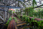 Abandoned Dania Beach Boomers and Hurricane Rollercoaster<br />