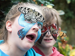 © Licensed to London News Pictures. 16/01/2015. Woking, UK . Emily (11) and Jay (8) Godfrey.  Children at a photocall at RHS Wisley today 16th January. Hundreds of exotic butterflies will once more be released into The Glasshouse at the Royal Horticultural Society's (RHS) Garden Wisley, in Surrey this winter from 17 January to 8 March. Visitors wandering through The Glasshouse will see butterflies such as the striking blue morpho, giant owl, king swallowtail and colourful Malay lacewing flying among the tropical plantings.. Photo credit : Stephen Simpson/LNP
