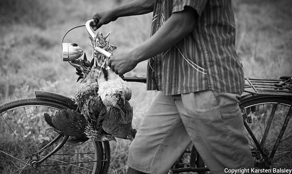 &ldquo;To Market&rdquo;                                                      Mozambique<br />