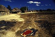 urucum em aldeia korotire-kaiapó em são félix do xingú no pará