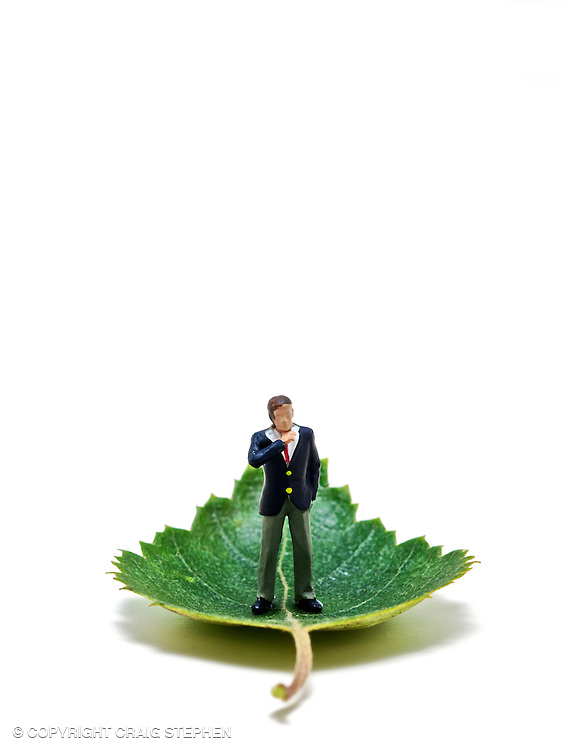 Figure of a business man standing upon a green leaf against a white background in studio