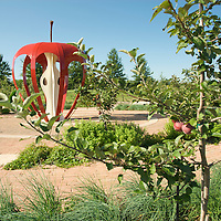 Powell Gardens Tomato Festival
