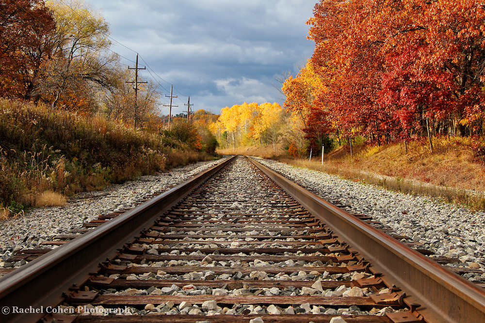 &quot;Westward Towards Gold&quot;<br /> <br /> Jump on these train tracks and head west into the golden fall foliage ahead!<br /> <br /> Autumn Landscapes by Rachel Cohen