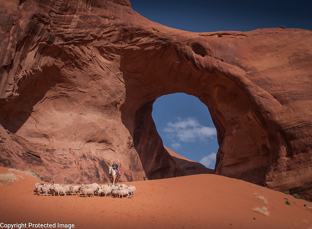 Monument Valley sheep