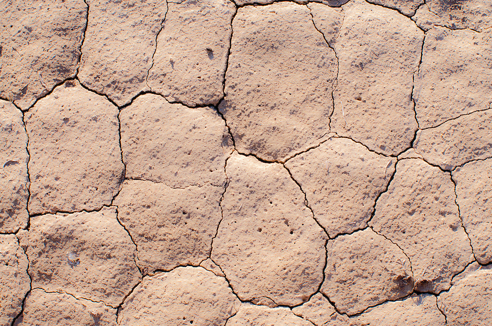 Cracked, dry earth in shrub steppe near Malheur National Wildlife Refuge, Harney County, Oregon.