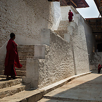 Monks inside the Punakha Dzong, Punakha, Bhutan