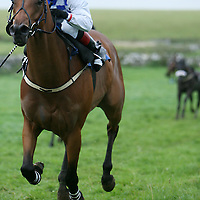 Lee Roche on Take That sails home to win the third at the annual Lisdoonvarna Races at the weekend.<br /><br />Photograph by Yvonne Vaughan.