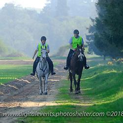 World Horse Welfare Elveden 2018