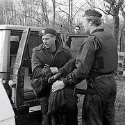 NLD/Ankeveen/19920323 - Arrestatie bankovervaller door arrestatieteam in de weilanden bij Ankeveen