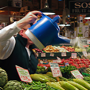 Man using watering can to sprinkle water on fresh vegetables, Pike Place Market, Seattle, Washington