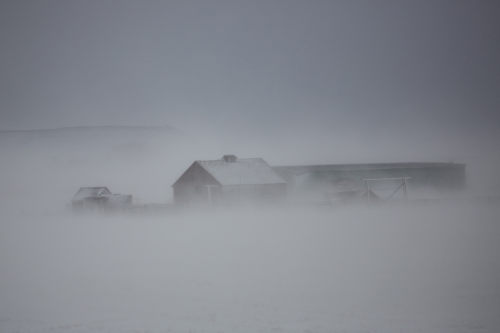 With its high-altitude prairies and broad ridges, Wyoming is notorious for its howling winds. This solitary barn is barely visible through the blowing snow near Clark, Wyoming.