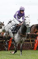 Paul John riding Echo Brava (6) during the J H Builders Novices´ Hurdleat Plumpton Racecourse - 13 Dec 2015