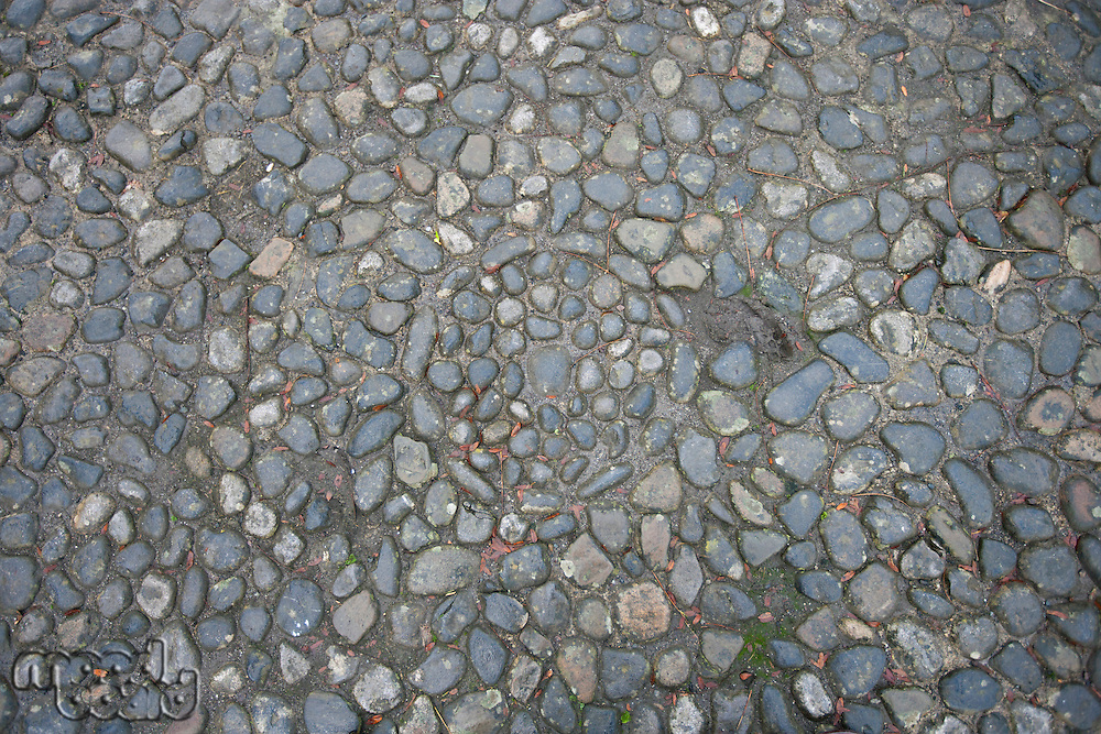 Circle pattern in stone path