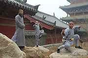 The monks of Shaolin Temple (literally means &quot;temple in the woods of Shaoshi Mountain&quot;) are trained in the martial art of Kung Fu.<br />