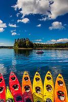Sea kayaks, Magoun Islands State Marine Park, Krestof Sound,  Inside Passage, Southeast Alaska USA.