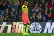 Manchester City midfielder Fernandinho (25) pointing, directing, signalling during the Premier League match between Crystal Palace and Manchester City at Selhurst Park, London, England on 19 October 2019.