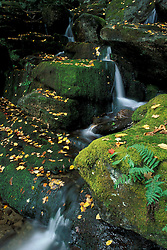 Hancock, VT..A waterfall on a tributary of Vermont's New Haven River.  Green Mountain National Forest.