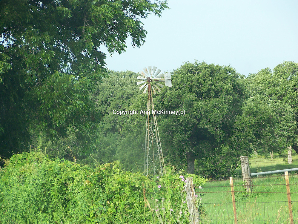 There are a lot of windmills in Texas, most out in pastures to draw water for the stock.