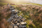 Collapsed dry stone wall on an early morning misty Nether Moor. .Edale is a valley in North Derbyshire, situated about 15 miles west of Sheffield, in the heart of the Peak District National Park. Edale valley is a loose collection of scattered farmsteads or 'booths' as they are known which grew up around the original shelters or 'boothies' used by shepards when tending their sheep on the hillsides. There are 5 main ones in Edale valley, Nether Booth, Ollerbooth, Upper Booth, Barber booth and Grindsbrook Booth of which the village called Edale is part. Edale village is in a lovely setting below Kinder Scout and is the start of the Pennine way, the first and longest footpath in England, opened in 1965.